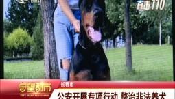 守望都市 公安开展专项行动 整治非法养犬