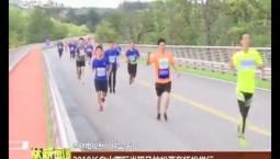 2019长白山国际半程马拉松赛在抚松举行