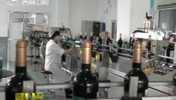 通化葡萄酒新万吨生产线项目投入生产