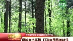 守望都市|保护生态环境 打造中国最美林场