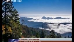 【庆祝新中国成立70周年微视频展播】山水画卷 生态白山· 秋
