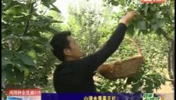 乡村四季12316|山清水秀果正红
