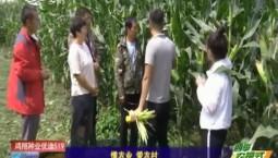 乡村四季12316|懂农业 爱农村