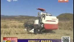 乡村四季12316 转变耕作方式 增加农民收入