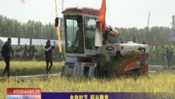 乡村四季12316|金秋时节 稻谷飘香