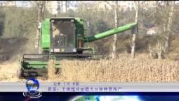 吉林报道|农安:千亩连片示范大豆品种获高产_2019-11-04