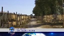 万博手机注册报道 长岭:拨出萝卜 带出幸福_2019-10-31