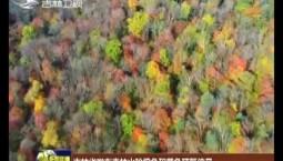 吉林省發布森林火險橙色和黃色預警信號