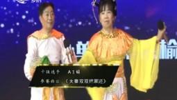 二人转总动员 王扞东 陈秀芹才艺表演《夫妻双双把家还》