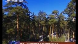 延边:构建三级网格化模式保护古树名木