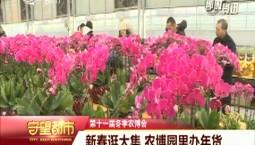 守望都市|第十一屆冬季農博會:新春逛大集 農博園里辦年貨