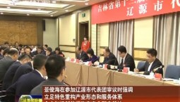 景俊海在参加辽源市代表团审议时强调 立足特色重构产业形态和服务体系 全力打造新能源汽车产业配套基地