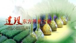 吉林报道|专题 《建设东方燕麦之都》_2020-01-16