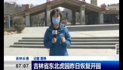 新聞早報|吉林省東北虎園昨日恢復開園