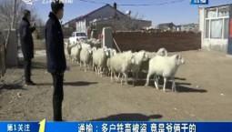 第1報道|通榆:多戶牲畜被盜 竟是爺倆干的