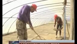 【堅定步伐 迎接春天】全省超過1200萬畝水稻陸續進入育秧階段
