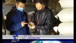 吉林报道 大安:小绿豆找到大销路_2020-04-15