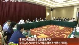 吉林代表团分组审议民法典草案、全国人民代表大会关于建立健全香港特别行政区维护国家安全的法律制度和执行机制的决定草案