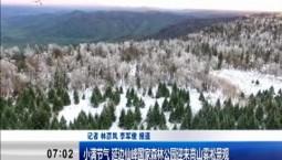 新闻早报|小满节气 延边仙峰国家森林公园迎来高山雾凇景观