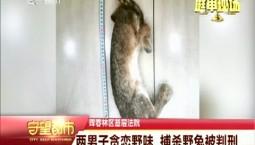 守望都市|两男子贪恋野味 捕杀野兔被判刑