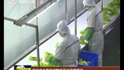 吉林省全面启动鲜食玉米品牌建设