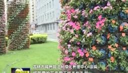 【粽情端午·江山如画】吉林市:花球花柱扮靓特色景观路