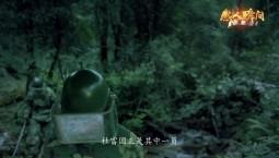 """""""感人瞬间""""系列微视频——杜富国"""