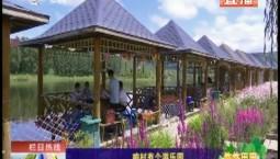 鄉村四季12316 咱村有個游樂園