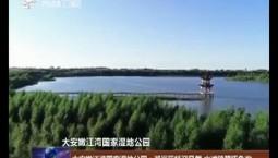 大安嫩江湾国家湿地公园:湖岸荻杨迎风舞 水滩鸥鹭啄鱼欢