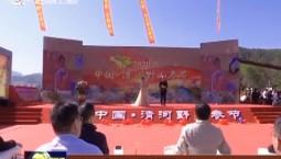 集安市举行2020中国·清河野山参节