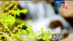 吉林报道|专题《美丽磐石》_2020-09-16