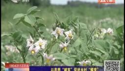 """乡村四季12316 以思想""""破茧""""促进乡村""""蝶变"""""""