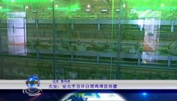 吉林报道|大安:安大千万只白羽鸡项目兴建_2020-10-05