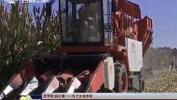 【庆丰收 迎小康——为了大地丰收】抢农时 齐发力 全省秋粮已收获五成以上