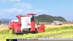 【慶豐收 迎小康——為了大地豐收】吉林:又是一年豐收季 水稻機械收割全面展開
