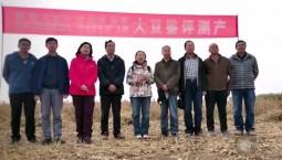 吉林省大豆品种再刷全国高产记录