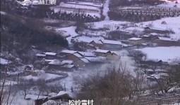 吉林新闻联播_2017-11-26