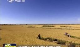 吉林新闻联播_2018-06-25