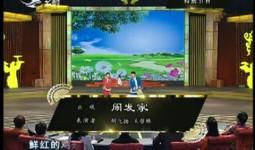 二人转总动员|胡飞扬 王哲琳演绎正戏《闹发家》