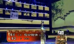 二人转总动员 多才多艺:肖桂芝演绎京剧《包公赔情》(选段)