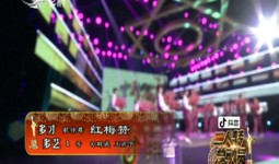 二人轉總動員|多才多藝:司群威 王洪宇表演歌伴舞《紅梅贊》
