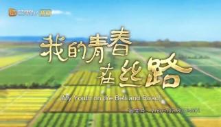 非剧情类丨我的青春在丝路第1集:我在巴基斯坦种水稻