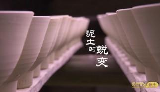 非剧情类丨手艺中国:茶花碗