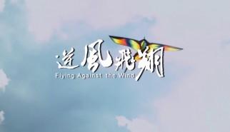 剧情类丨逆风飞翔