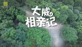 剧情类丨大威相亲记(结局三)