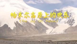 剧情类丨帕米尔高原上的欢乐