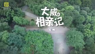 剧情类丨大威相亲记(结局四)