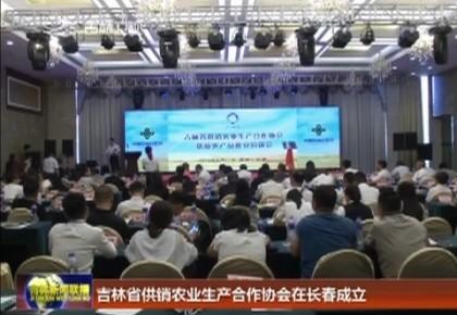 吉林省供销农业生产合作协会在长春成立
