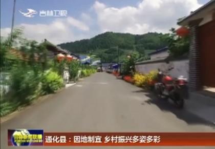 通化县:因地制宜 乡村振兴多姿多彩