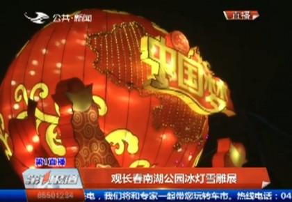 第1报道 观长春南湖公园冰灯雪雕展